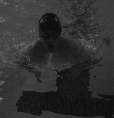 swimmer_result