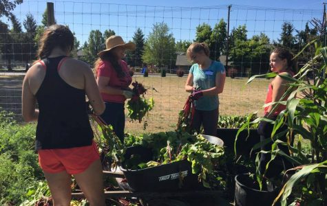 Students engage in service, community through First CLAS
