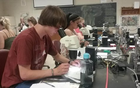 iFOCUS gets students involved in sciences