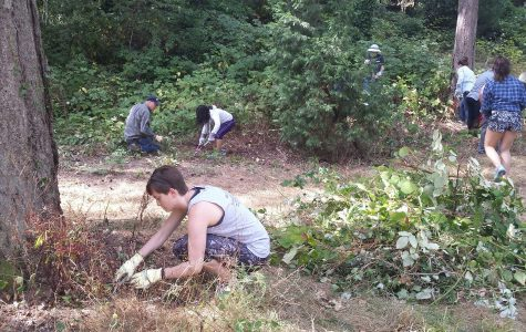 Students get involved in sustainable living on campus