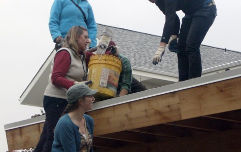 Lizzie Martinez (top left), AmeriCorps Vista Volunteer; Dawn Graff-Haight (inside), professor of health, human performance and athletics; and seniors Katie Kann (top right) and Dayna Tapp (bottom left) use sod to assemble an eco-roof Nov. 5. Sarah Hansen/Photo editor