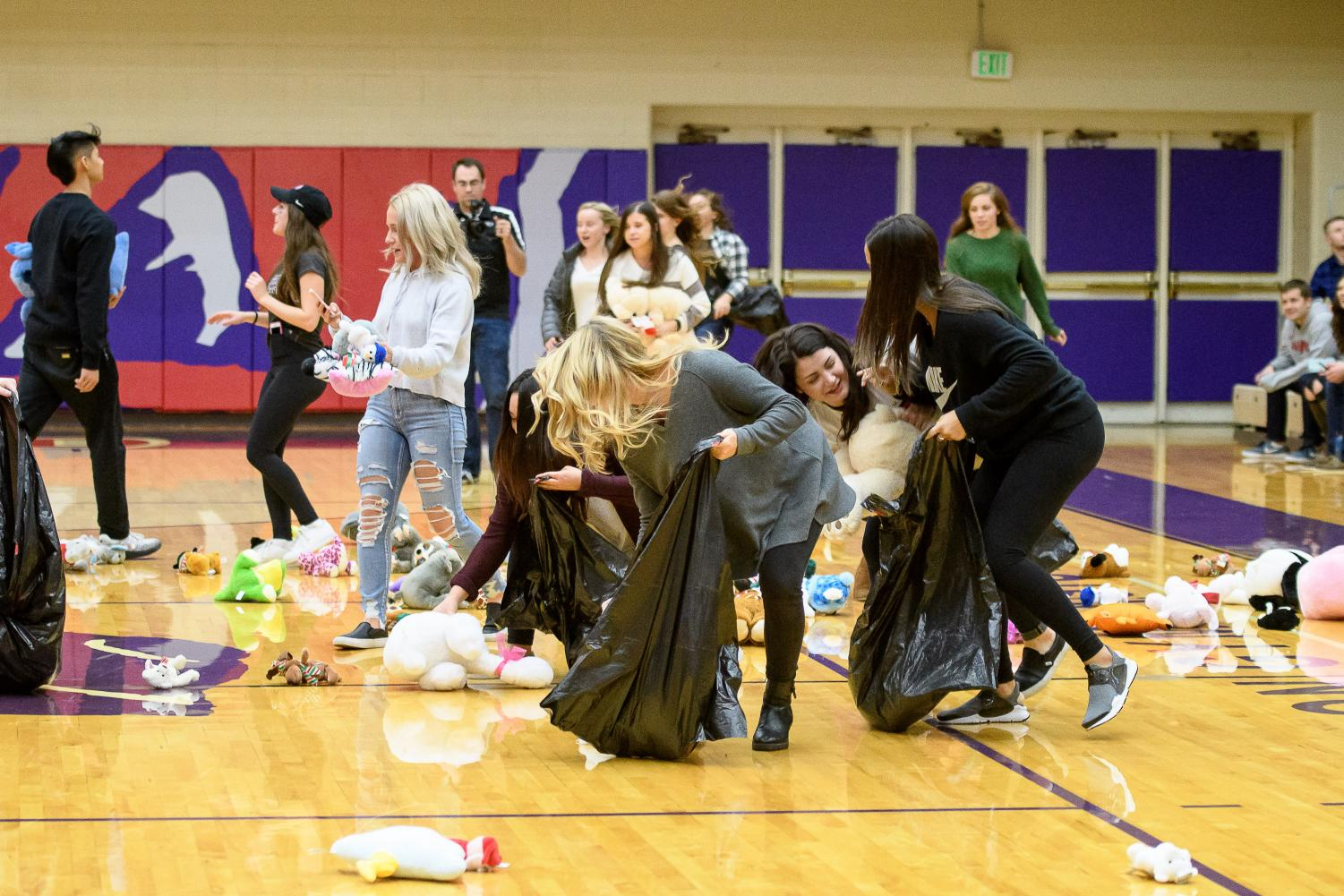 Phi Sigma Sigma member collect stuffed animals off gym floor after toss