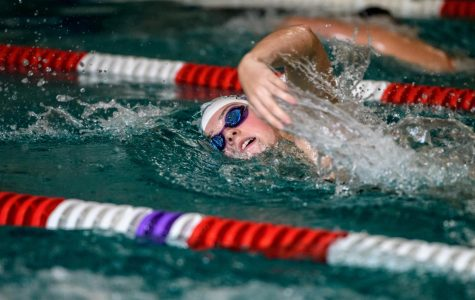 Wildcats break records NWC championships