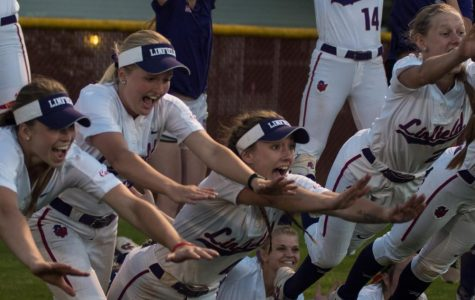 Wildcats knock regional tournament out of the park