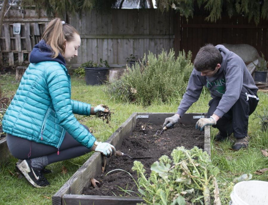 Linfield garden leadership means growth, greens