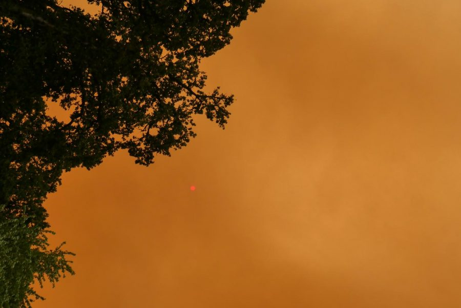 Through the layers of smoke, the sun was barely visible as a red disk.