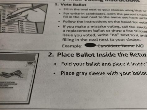 Students who vote this year will likely be submitting ballots by mail.